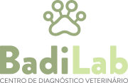 Badilab