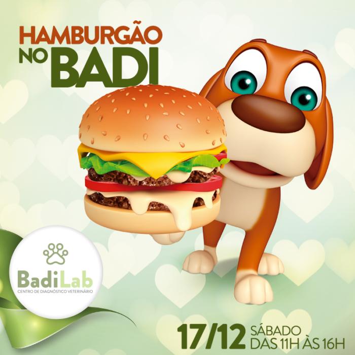 03-posts-novo-hamburgao
