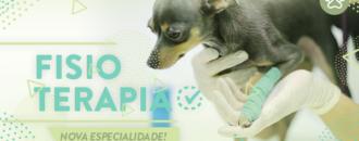 Banner_NewFisioterapia_BadiLab